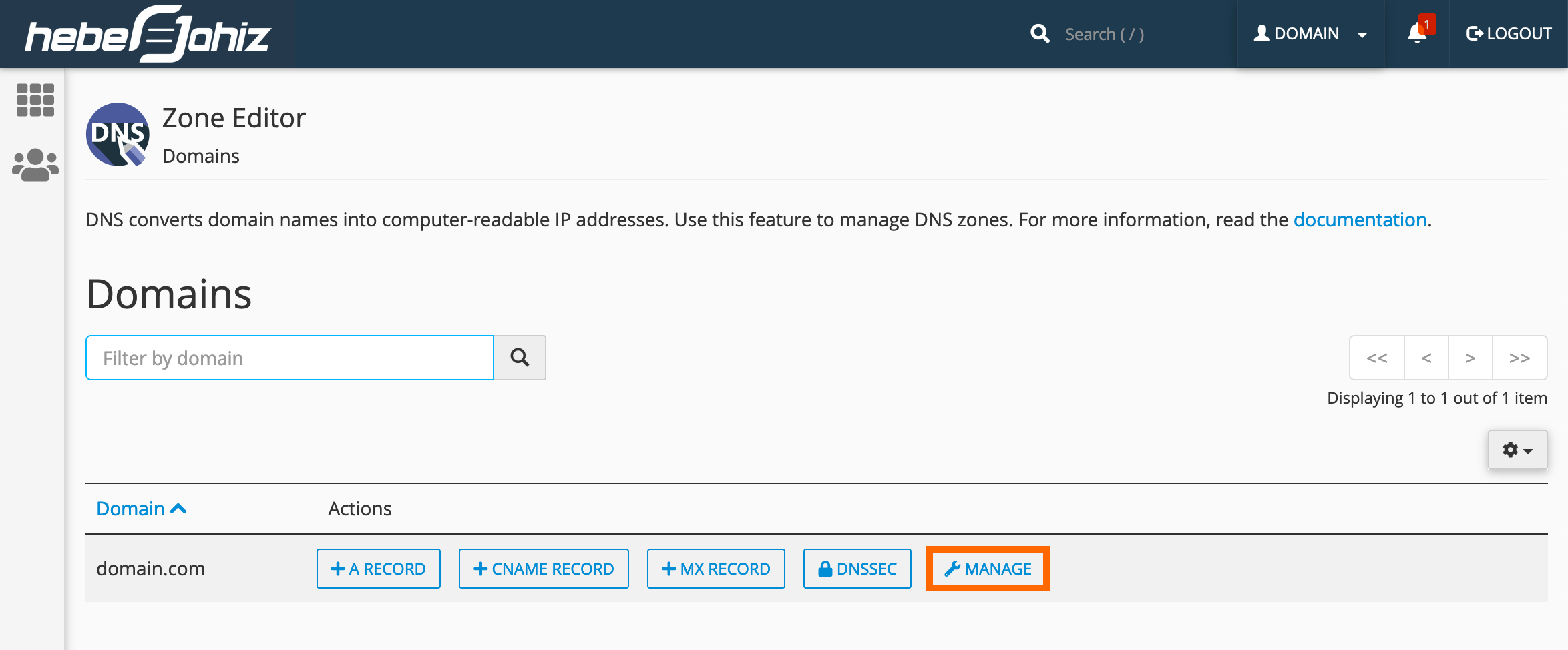 cPanel : Manage DNS Records